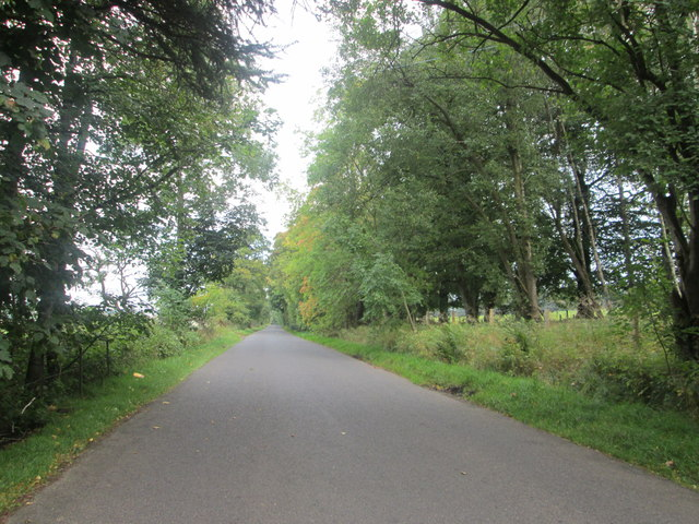 Shieldhill Road heading E-N-E below Huntfield Hill