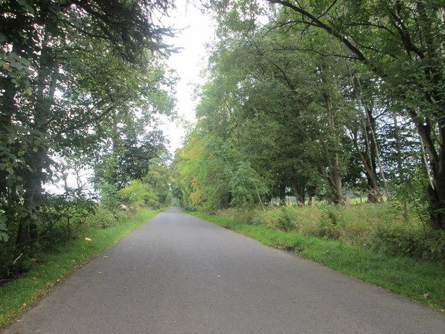 Shieldhill Road heading E-N-E below Huntfield Hill