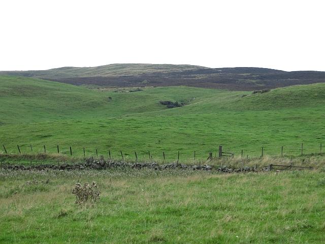 Tillyrie / Holeton Hill