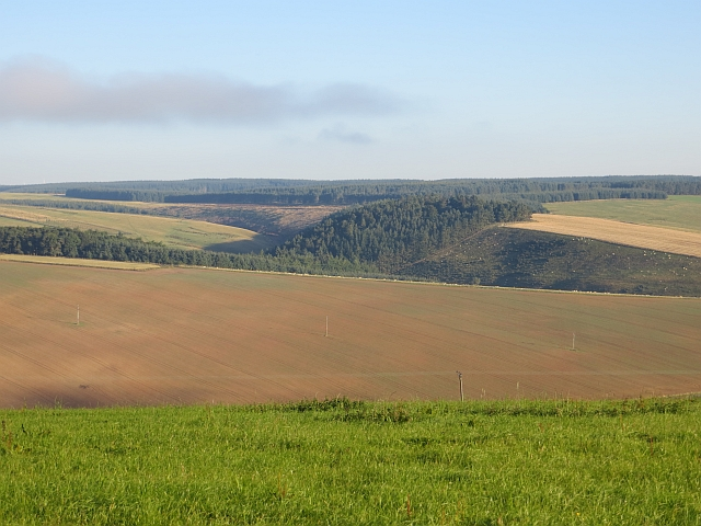 Fields and woods above Ellemford