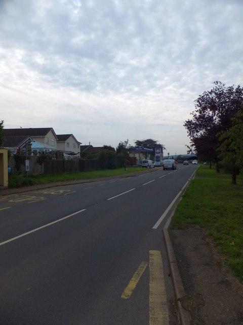 A358 in Musbury