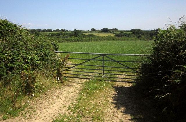 Field entrance near Lutworthy
