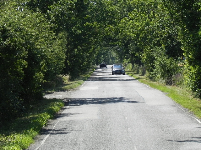 The Avenue, Madingley