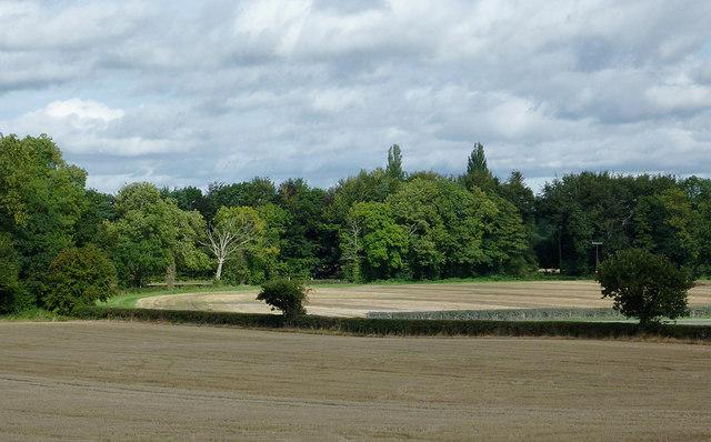 Farmland south-west of Eardisland, Herefordshire