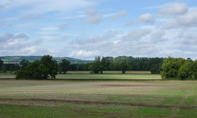 Farmland east of Pembridge, Herefordshire