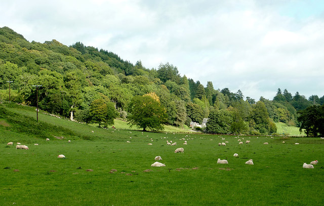 Pasture and woodland north-west of Beulah, Powys