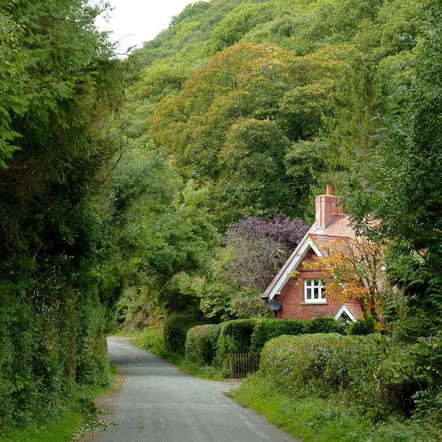 The lane to Abergwesyn, Powys