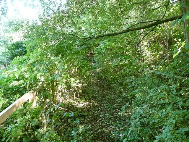 Elland Footpath 38