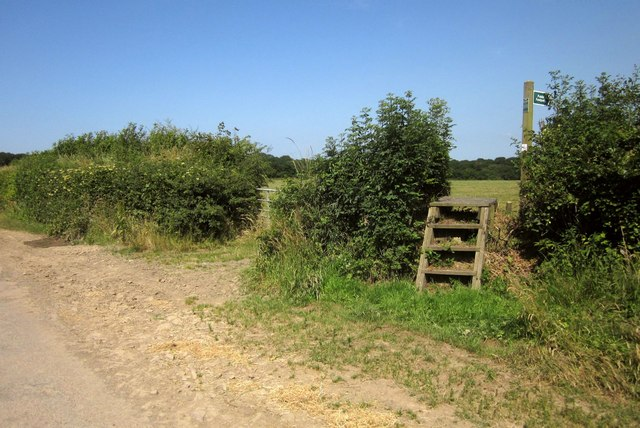 Footpath, Mouseberry