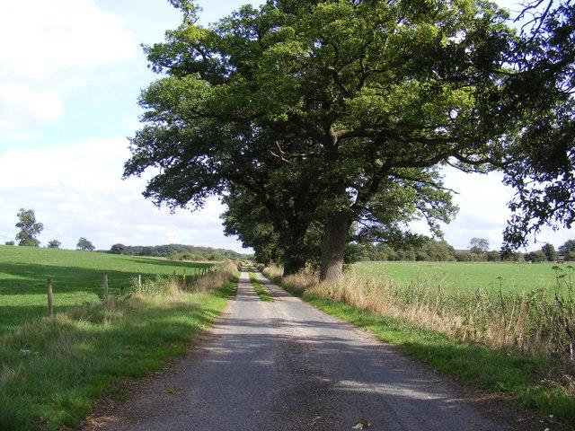 The entrance to Bixley Park Farms