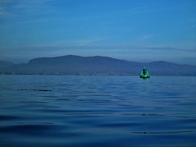 Shiants marker buoy