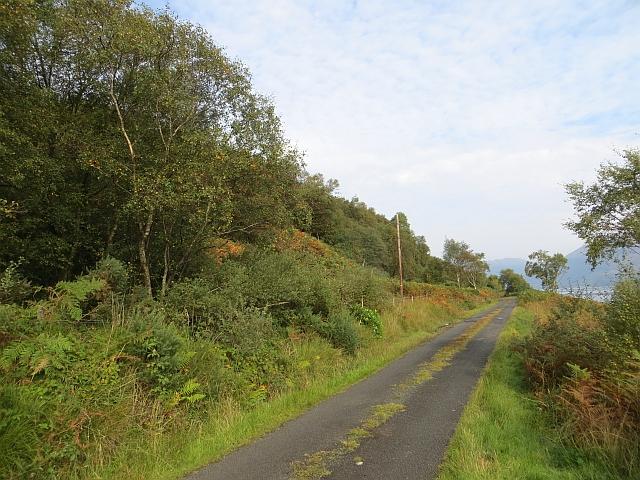 Road beside Loch Striven
