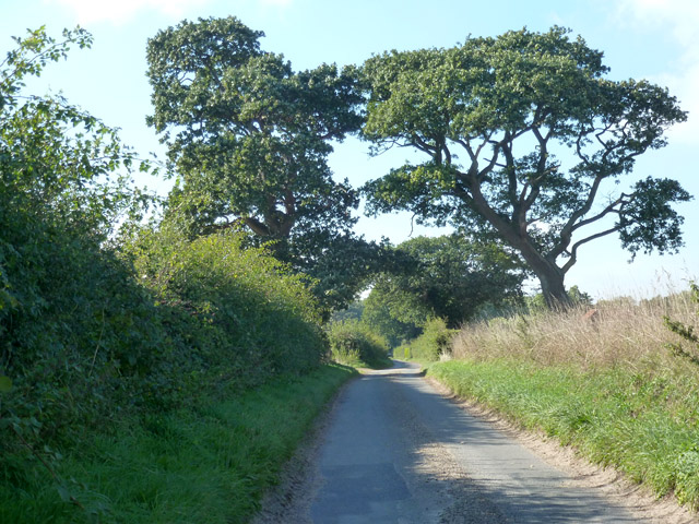 Elderton Lane