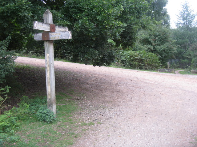 Footpath sign in the Forest of Dean