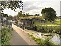 SD7807 : Manchester, Bolton and Bury Canal, Remains of Railway Bridge at Radcliffe by David Dixon