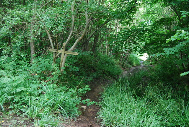 Bridleway junction, High Wood