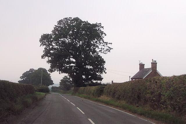 Oakdene south west of Marton