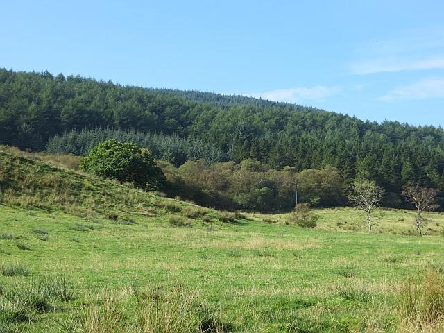 Field, northern Bute