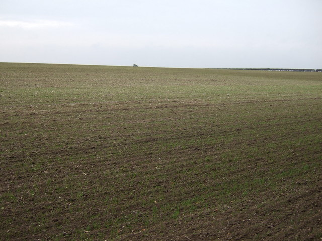 Farmland south of Woldgate