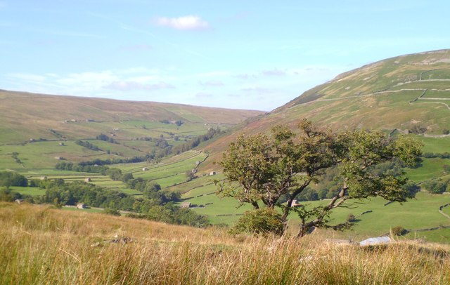 Swaledale hillside