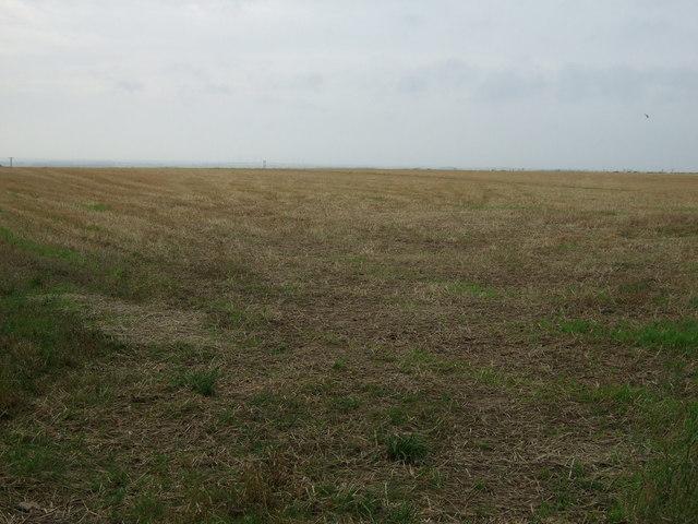 Farmland off Woldgate