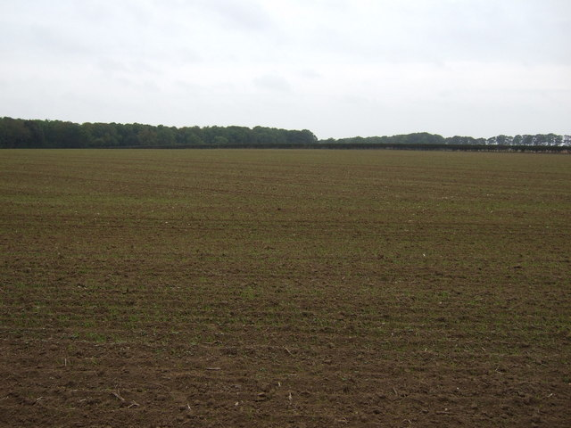 Farmland off Church Lane