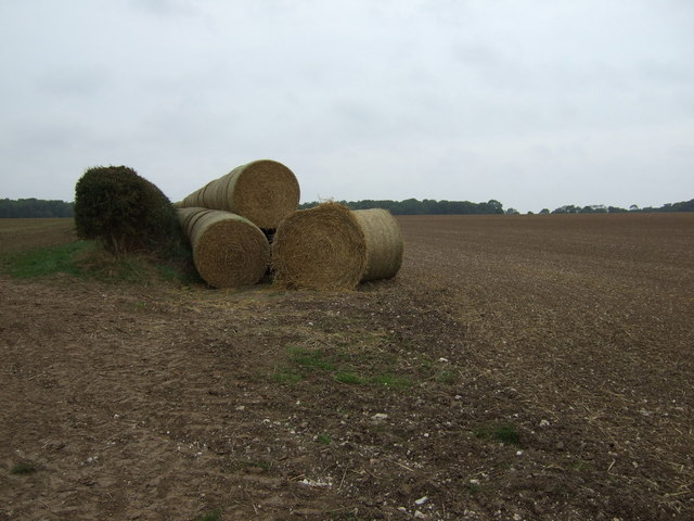 Bales, hedgerow and farmland