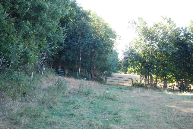 Bridleway by Wellhead Wood