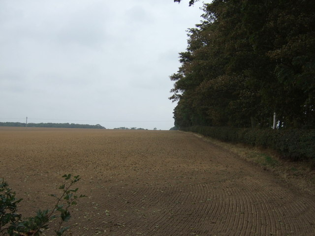 Farmland beside bridleway