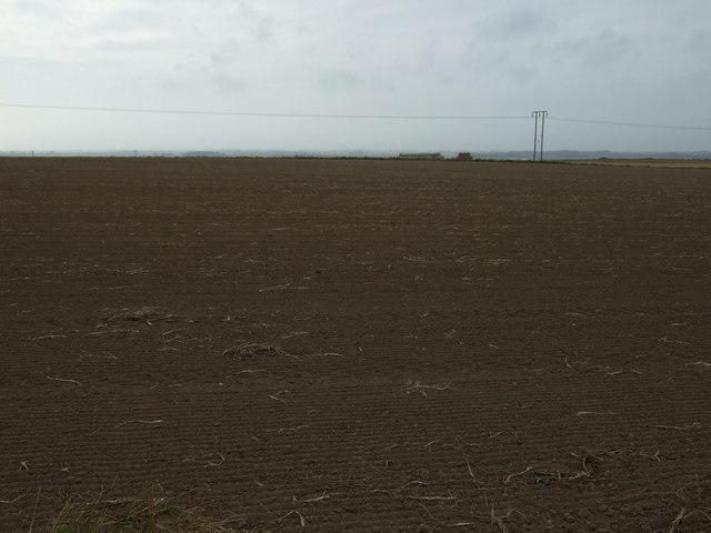 Farmland, Carnaby Field