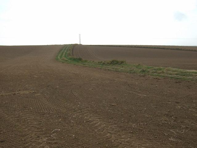 Farmland and track, Haisthorpe Field