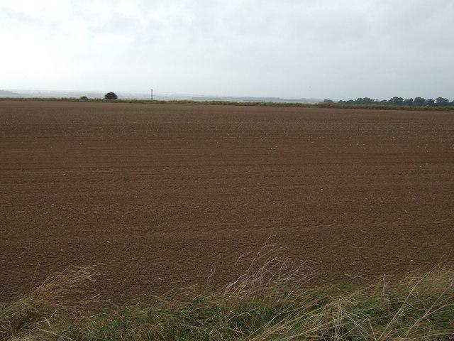 Farmland towards Haisthorpe