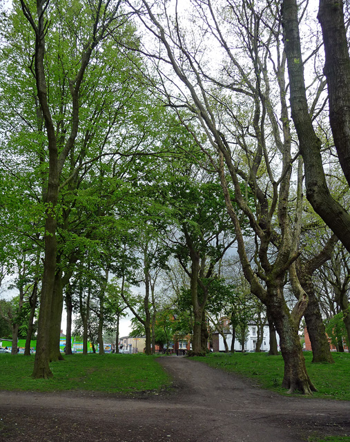Whitworth Park, Manchester (2)