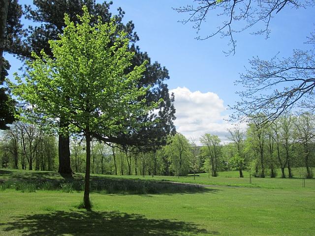 Brodie Park, Paisley