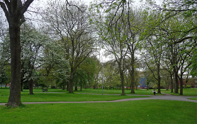 Whitworth Park, Manchester (3)