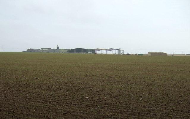 Farmland towards Temple Farm
