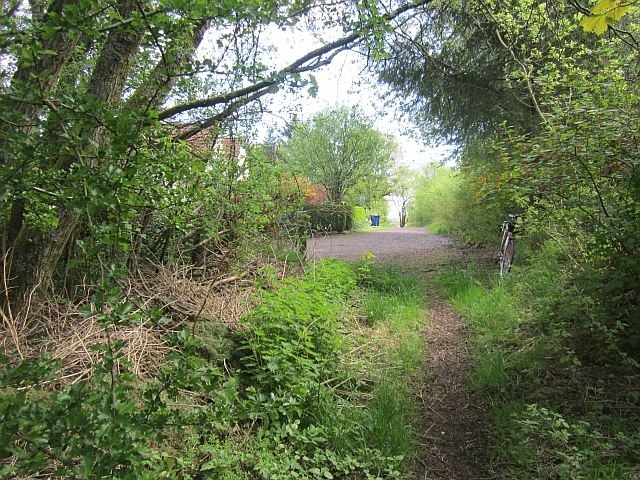 Path, Hollowhouse