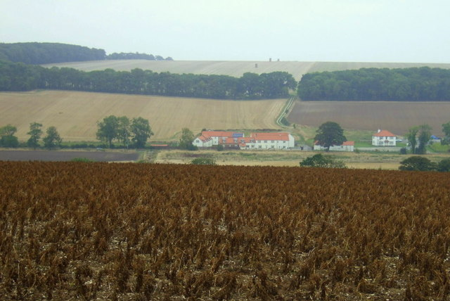 Crop field north of Woldgate
