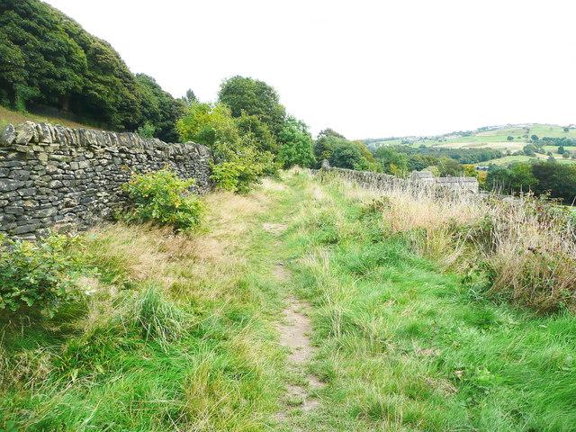 Old Dan Lane