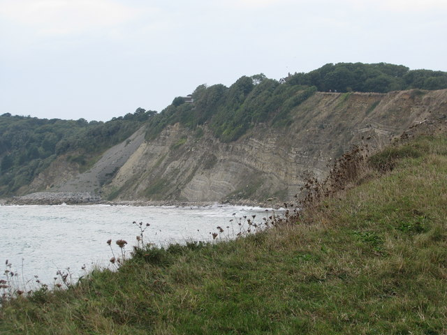 The cliffs of Durlston Bay