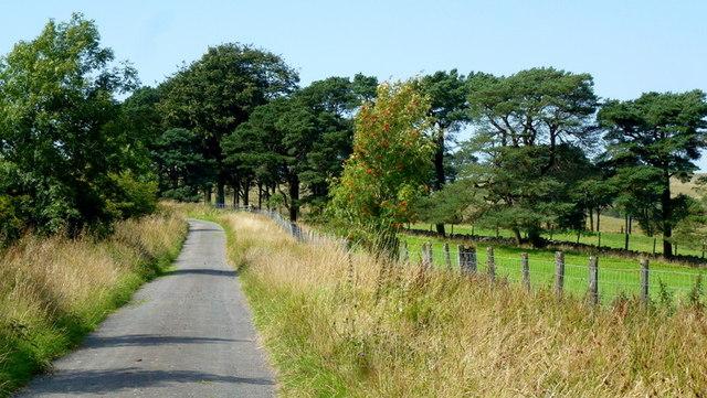 Twyn yr Arian Road