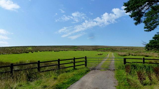 Track onto open moorland