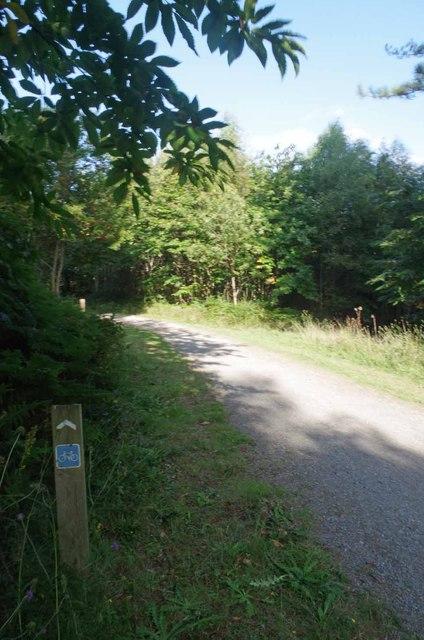 Cycle Track Near Louisa Lake