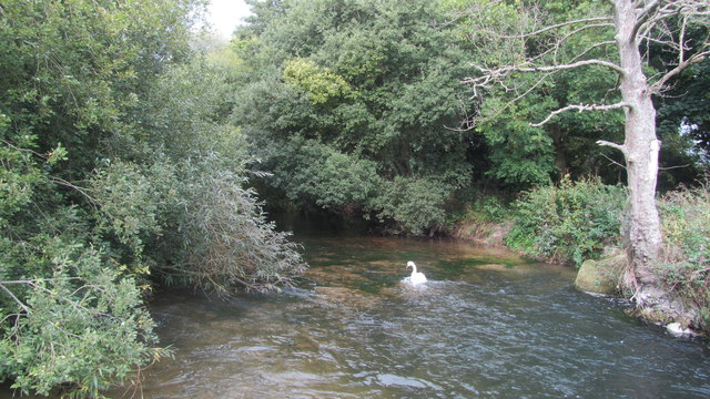 River Test from Nursling mill footpath