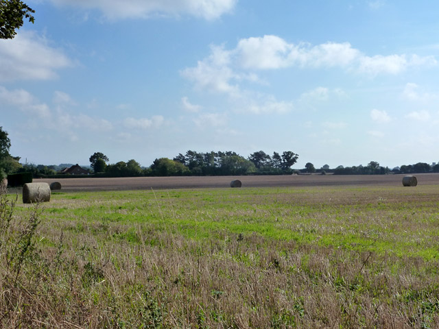 Fields south of Southrepps Common