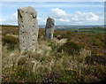 SW5037 : Standing stones on Trink Hill by David Medcalf