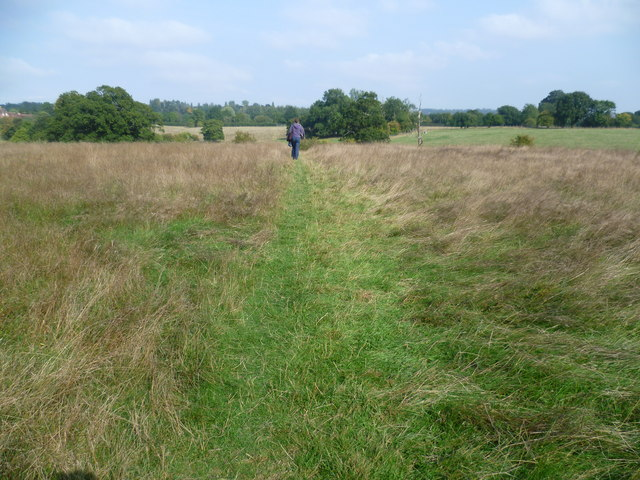 Footpath near Willow Wood