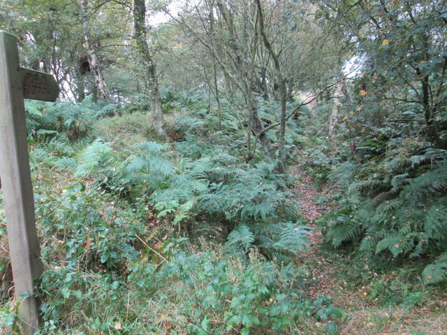 Scamridge Dykes