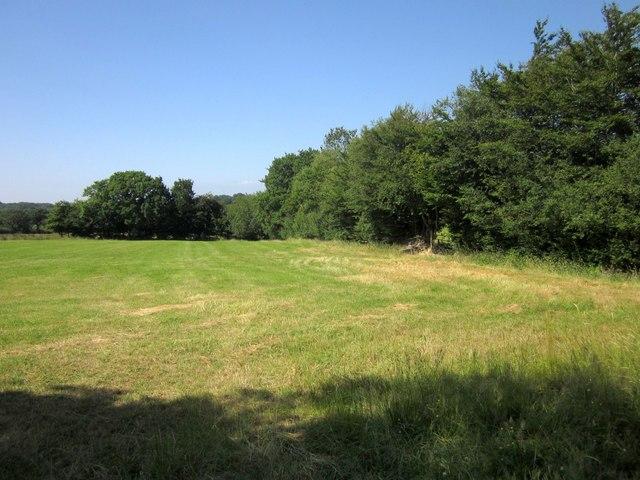 Field near Burrow Cross