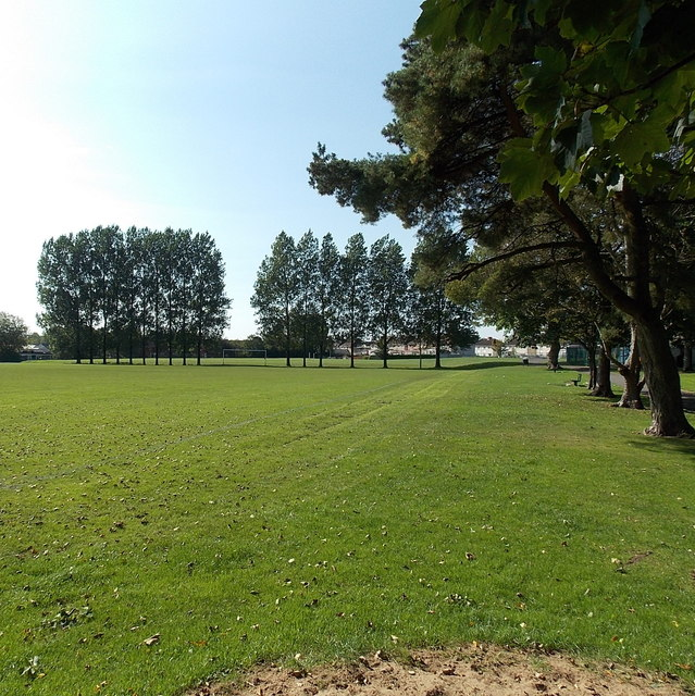 Tree-lined football pitch in Parc Y Werin, Gorseinon
